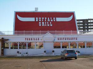 20100822144242-buffalo.jpg